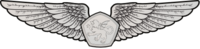 RMN Aerospace Wings Enlisted.png