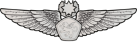 RMN Master Aerospace Wings Enlisted.png
